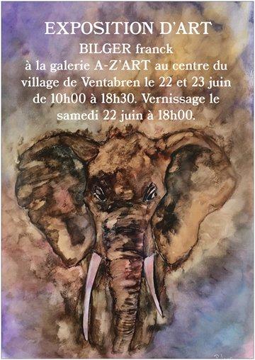 Exposition d'art Franck BILGER
