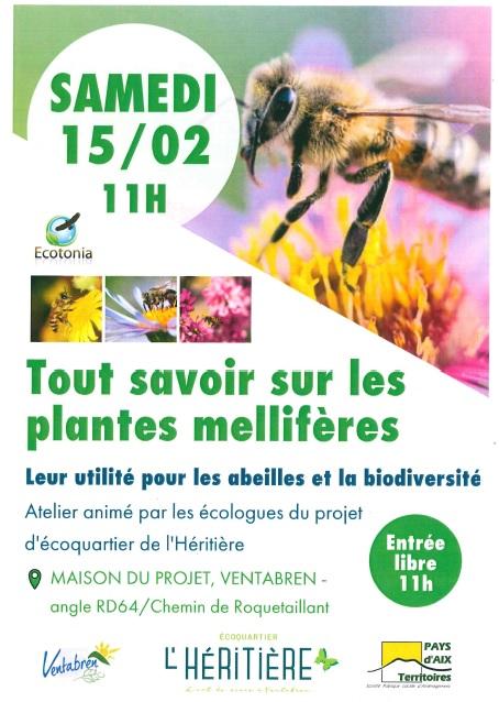 Atelier plantes mellifères